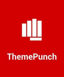 ThemePunch
