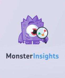 MonsterInsights
